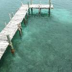 awesome dock