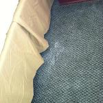 Powdery substance on carpet throughout the room.