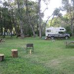 Foto van Fort Ponderosa Campground