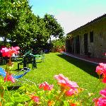 B&B Poggio del Drago Saturnia