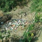  Waste disposal behind the property premises