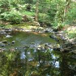 Martinville Streamside Cottages의 사진