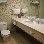 Φωτογραφία: Hampton Inn Hartford Airport