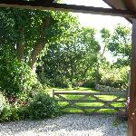  View from front door towards our private garden