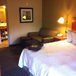 Hampton Inn Ann Arbor-South resmi