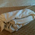 this is how the lady folded my blanket in my bed after completing my room July 2012