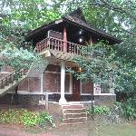  One of the Wooden Houses resembling old kerala tradional house
