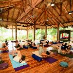 Beachfront open-air Yoga class (group or private)