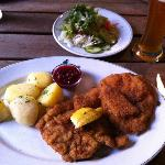 Schnitzel and a side salad