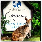 Foto de Couran Point Island Beach Resort Gold Coast