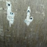 Holes in the bathroom door