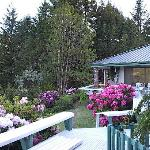 Foto de A Country Retreat Bed and Breakfast