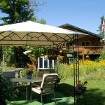Cedarwood Lodge - Garden and Gazebo
