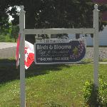 Φωτογραφία: Birds & Blooms Bed and Breakfast