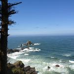 Tillamook Head Traverse Hike