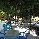  Hotel terrace and the vines