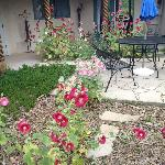 Lovely courtyard with hollyhocks in full bloom!
