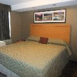 Woodlands Inn & Suites Foto