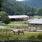 Beautiful Mountain Horse Country (Entrance far center and horse barns)