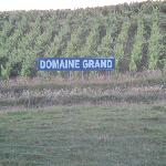  vignobles du propritaire du domaine
