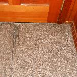 carpet by door
