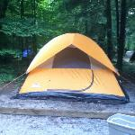 Foto de Cataloochee Campground