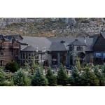 Photo of The Resort on Mount Charleston