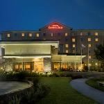 ‪Hilton Garden Inn Tampa / Riverview / Brandon‬