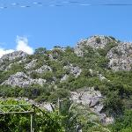  Area