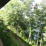  View off balcony (trying to capture walking trail)
