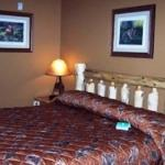 Pine Peaks Lodge and Suites resmi