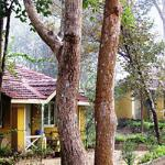 Photo of Wild Chalet Resort Mandla