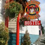 The Riding Fool Hostel