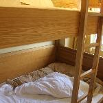 confy bunk beds