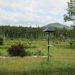 A Peace of Heaven Bed and Breakfast Foto