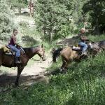 Estes Excursions Day Tours