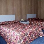 NJRex Motel Egg Harbor Township Bed