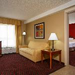 Foto van Hampton Inn Greenville / Simpsonville