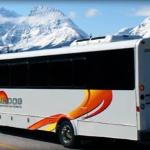 SunDog Tours