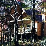 Hocking Hills Resort has 3 Cedar Vacation Homes for up to 9 guests, & 6 Love Bug cabins for cou