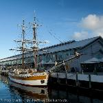 Shutterbug Walkabouts Tasmania - Day Tours