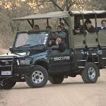 Guests in one of our Open Safari Vehicles