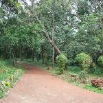  Pathway in Nairobi