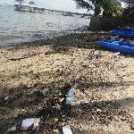Saturday afternoon, the beach was full of rubbish