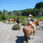 Mount St. Helens Adventures Tours Eco-Park and Tent & Breakfast의 사진