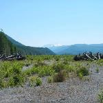 Billede af Mount St. Helens Adventures Tours Eco-Park and Tent & Breakfast