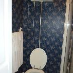  pull chain toilet in the Catherine Room