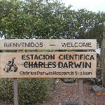 Darwin Island
