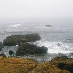  The rocky coast