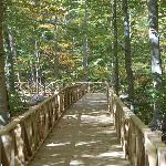 Stamford Museum & Nature Center -- Wheels in the Woods Trail